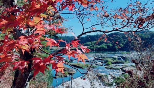 【2019年伊佐市もみじ祭り!】第58回曽木の滝公園もみじ祭りの見所やアクセス方法、おすすめの同日開催イベントの情報をまとめてみましたよー!