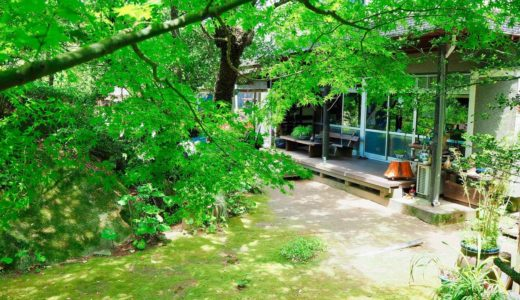 【夢ロード青木】四季折々の食材を使った田舎料理と気持ちのいい空間に癒されて!