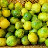 ゆず香房 柚子の実