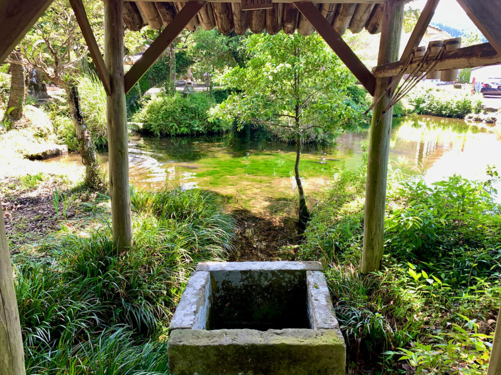 鳥神神社 湧水