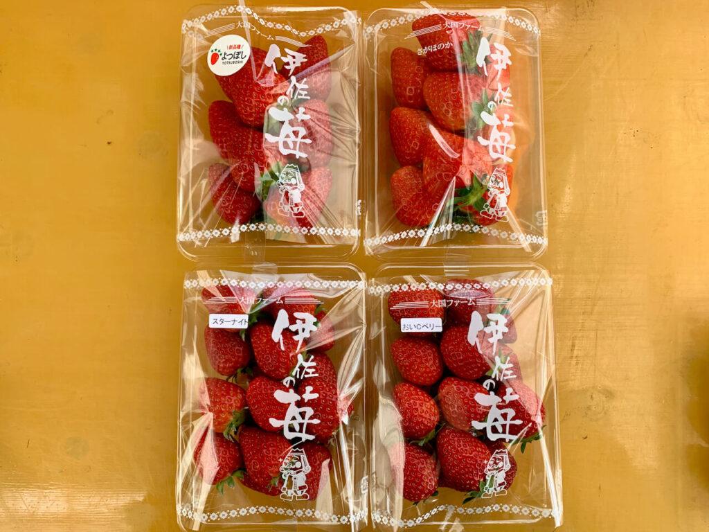 大国ファーム イチゴ
