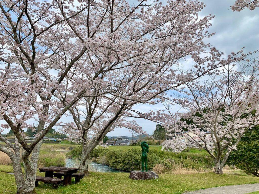 ガラッパ公園 桜